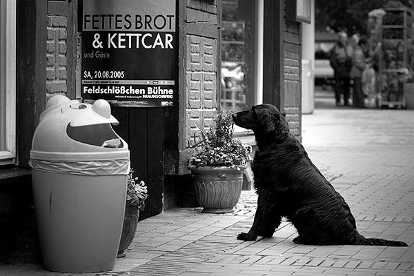 Fettes Brot | Canon 10D, EF 70-200 2.8, 70mm,  f 2.8, 1/250s, ISO400