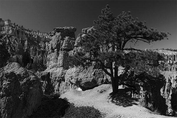 Peek-a-boo, Bryce Canyon NP
